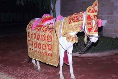 Shri Laxmi Band