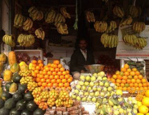 Rajesh And Ram Nath Fruits Merchant