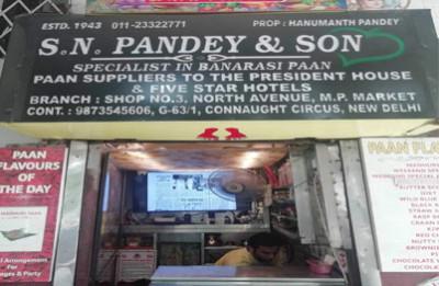 S .N. Pandey & Sons