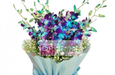 D P Saini Florist