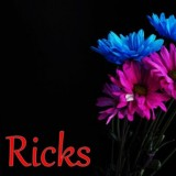Ricks Digital